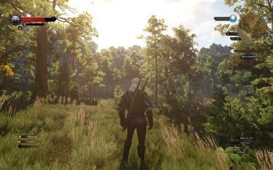 The Witcher 3: Wild Hunt gameplay screenshot